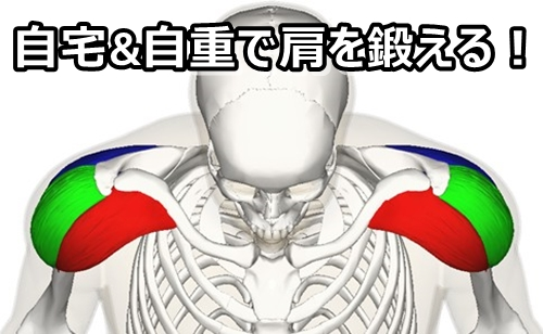 【自宅で筋トレ】肩を鍛える器具いらずの自重最強メニュー5選