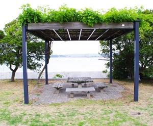 吊り輪 公園