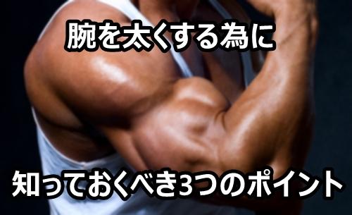 筋トレで腕を太くする為に知っておくべき3つのポイント