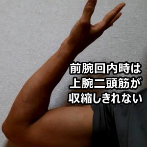 プルアップ 前腕回内 上腕二頭筋