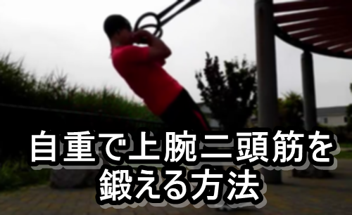 自重で効果的に上腕二頭筋【力こぶ】を鍛える3つのエクササイズ
