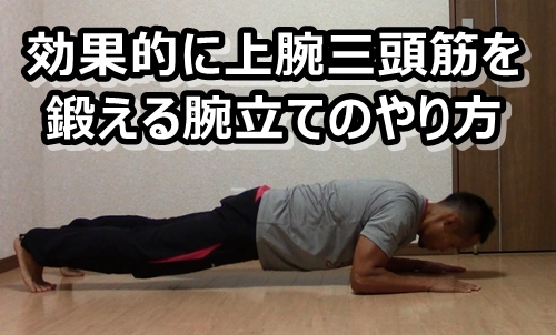腕立て 上腕三頭筋 バリエーション