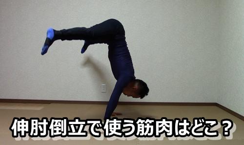 しんぴ倒立 伸肘倒立 筋肉